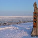 北海道ならではの景色【流氷】を見に道東へ!おすすめスポットまとめ