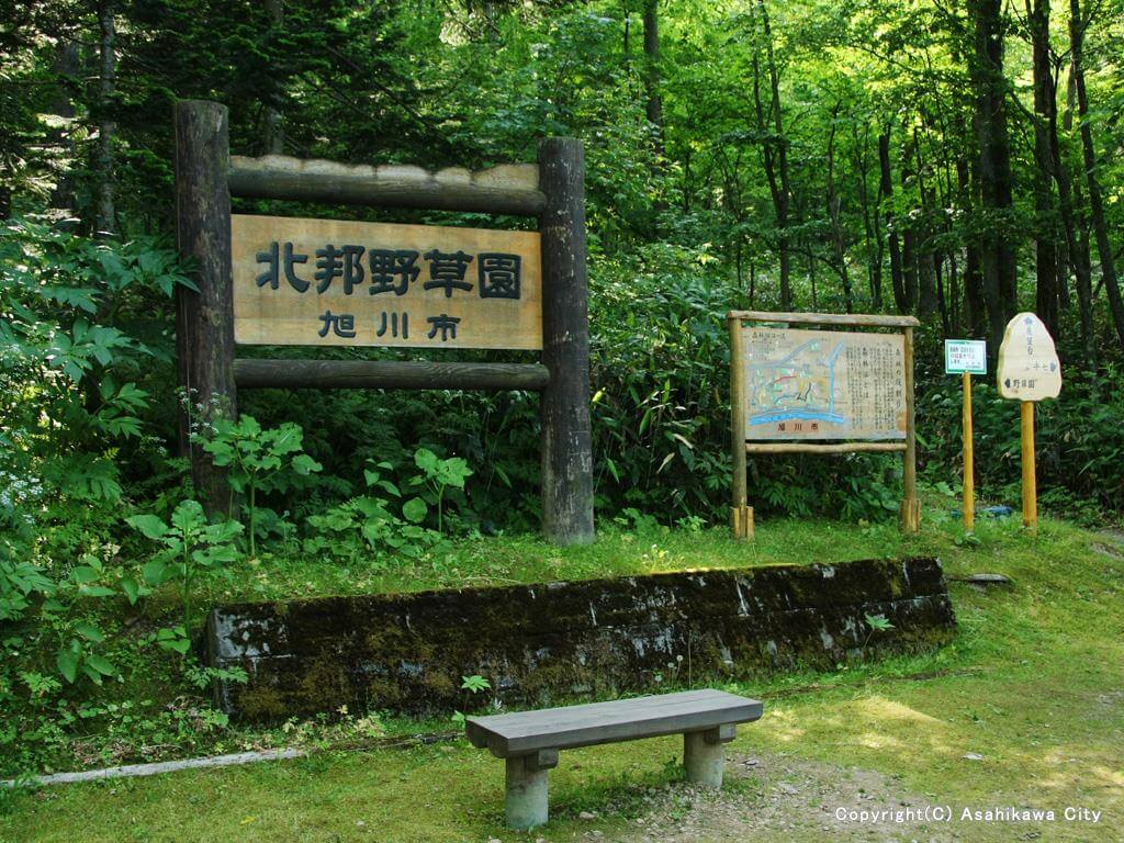 嵐山公園_北邦野草園1